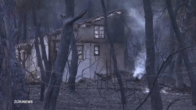 Fast alle Waldbrände in Griechenland unter Kontrolle