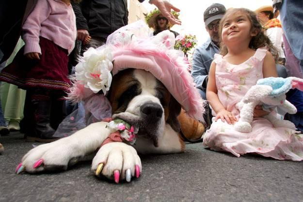 Tierisch bunt und schrill muss es an der Osterparade in New York sein