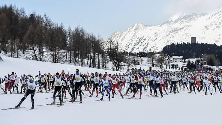 Heute findet die 49. Austragung des Engadin Skimarathons statt