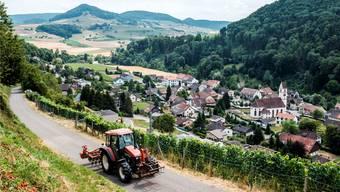 Das ländliche Mettauertal bekommt einen digitalen Dorfplatz..