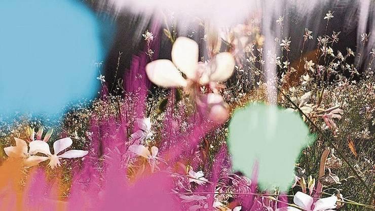 Pigmentprint von Sandra Senn, ohne Titel, 2020.