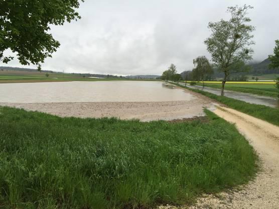 Ein Feld neben dem Kanal ist voll Wasser