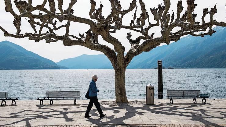 Einsamer Spaziergänger: Die Seepromenade von Ascona am Ostersonntag.