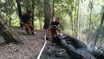 Die Feuerwehr musste am Dienstagmorgen zu einem Brand am Zürcher Üetliberg ausrücken. Sie konnte ein Ausbreiten im Wald verhindern.