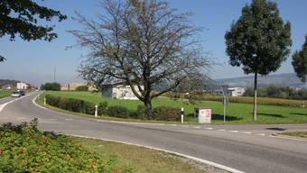 Blick vom Kreisel auf die von Niederwil vorgeschlagene Einzonung im Gebiet Fändler.