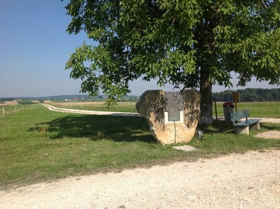 Das Denkmal wurde von einer Gruppe von Einheimischen der umliegenden Ortschaften Aesch, Reinach und Ettingen sowie von der Christoph Merian Stiftung (CMS) - der Besitzerin des betreffenden Geländes. angeregt.