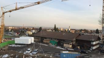 Das Egelmoos in Biberist: Hier sollen drei Wohnbauten erstellt werden.