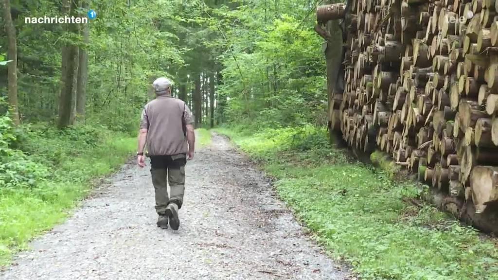 Grosse Herausforderungen für Luzerner Wälder
