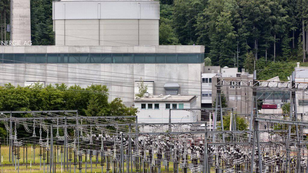 Die BKW hat 2015 etwas weniger Gewinn geschrieben. Im Bild das Atomkraftwerk Mühleberg.