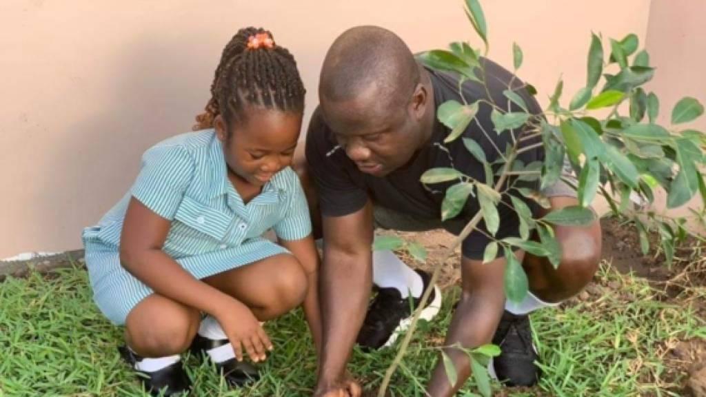 Rettungsaktion für Regenwald: Ghanaer pflanzen 5 Millionen Bäume
