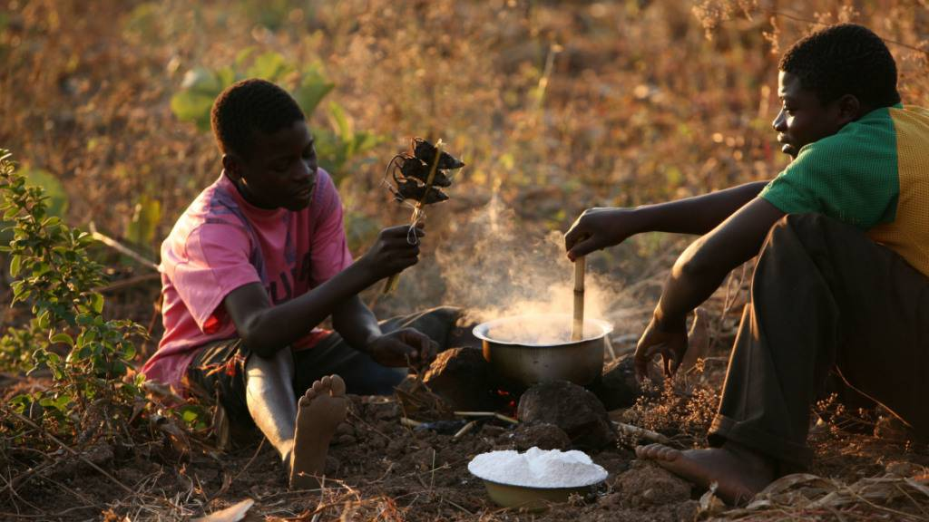 Guterres warnt in Coronakrise vor «globalem Lebensmittel-Notstand»