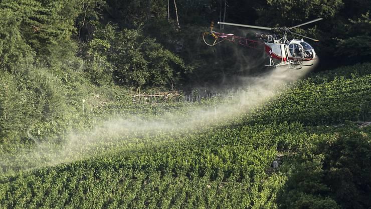 Pestizide in der Landwirtschaft - wie hier ein Mittel gegen Pilzbefall der Reben - stossen in Teilen der Bevölkerung auf Kritik. Der Schweizer Bauernverband hat daher eine Broschüre herausgegeben, um das Vertrauen der Konsumentinnen und Konsumenten zu gewinnen. (Archivbild)