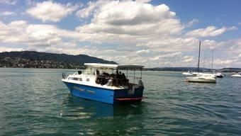 Mit Sonnenkraft über den Zürichsee