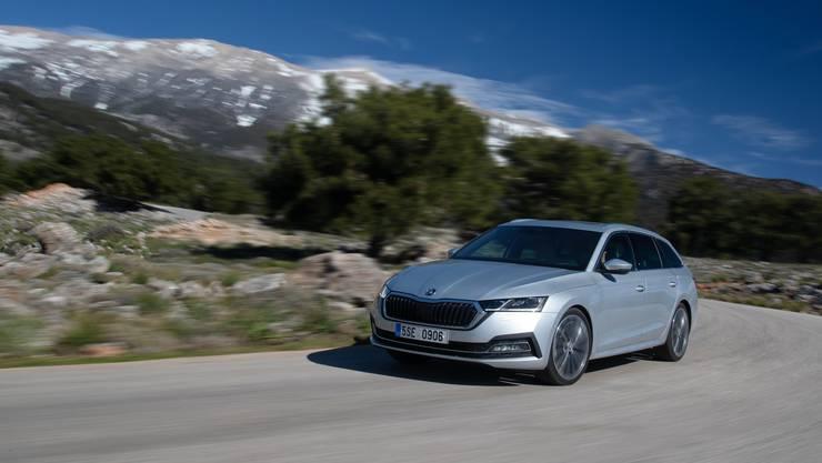 Rundum gelungen: Der neue Škoda Octavia überzeugt nicht nur optisch. Im Test gefallen die einfache Bedienung, das gute Raumangebot und der sparsame Antrieb.