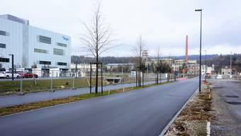 Auf der neuen Attisholzstrasse baut der Kanton eine Bushaltestation in der Nähe von Biogen. Pföstchen markieren den Standort.