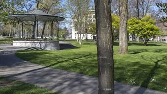 Der versuchte Raubüberfall ereignete sich am Sonntag im De-Wette-Park beim Pavillon. Das Opfer musste in die Notfallstation eingewiesen werden.
