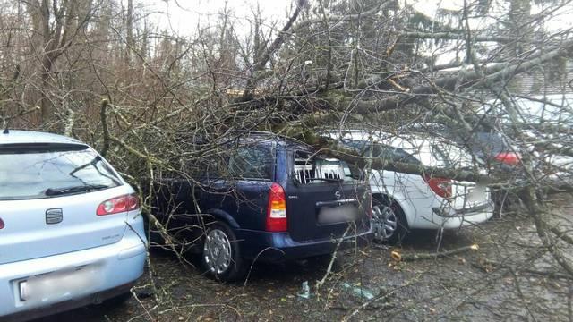 Umgekippte Bäume, Stromausfälle und Stau