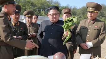 Hat nach Angaben des US-Aussenministeriums kein Interesse an einem Gespräch mit den USA: Nordkoreas Machthaber Kim Jong Un.
