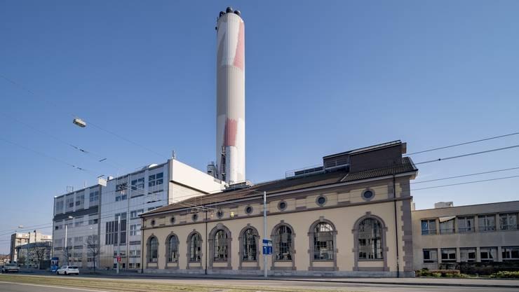 Seit 40 Jahren bieten die Wegzeichen am Rhein den Baslern Orientierung.