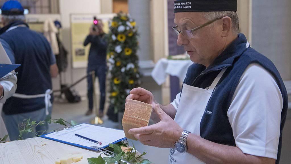 Ein Jury-Mitglied testet die Käse bei den Swiss Cheese Awards 2018 in Luzern.