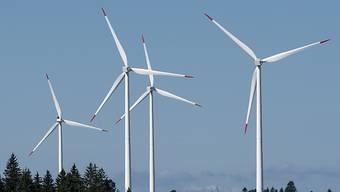 Das Projekt zum Windpark von Muttenz rufen verschiedene Gegner auf den Plan.