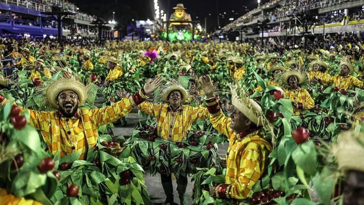 """Samba-Schule """"Unidos da Tijuca"""" am Karneval von Rio de Janeiro (Archiv)"""