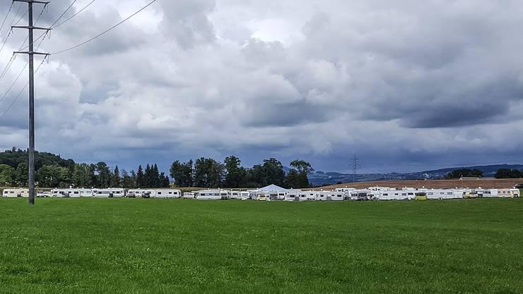 Freie Sicht auf das Fahrendenlager im Weyhölzli, Merenschwand. Auf dem Land von Josef Fischer erwuchs diese Woche ein eigentliches Wohnwagendorf.