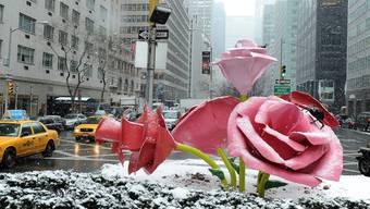 """Im winterlichen New York """"blühen"""" überdimensional grosse Rosen des Künstlers Will Ryman"""