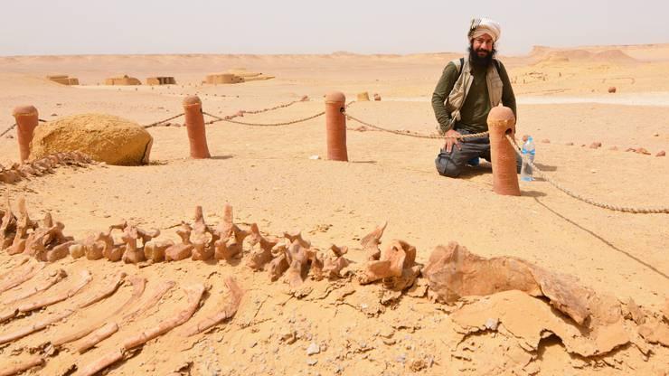 Tal der Wale (Wadi al-Hitan) in Ägypten.