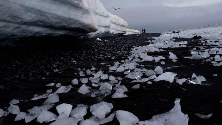 Entsalztes Meereis kühlte die Meeresoberfläche in der Antarktis während Jahren ab.
