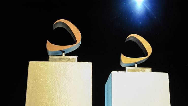 Der RFV vergibt jährlich den Basler Poppreis. Heuer feiert sich der Verein selbst.