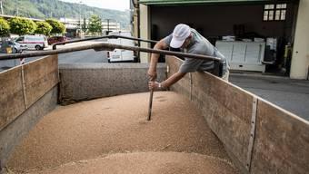 Die Landi-Getreidesammelstelle in Brugg-Windisch