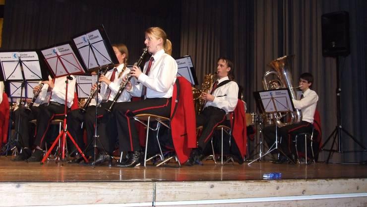 Orchestermusik auf hohem Niveau: Das Blasorchester der Jugendmusik Bezirk Affoltern. (Bild Thomas Stöckli)