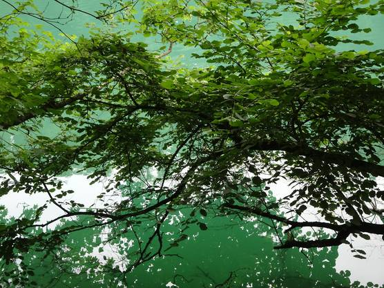 Bei Bremgarten der Reuss entlang ist es besonders schön an heissen Sommertagen!