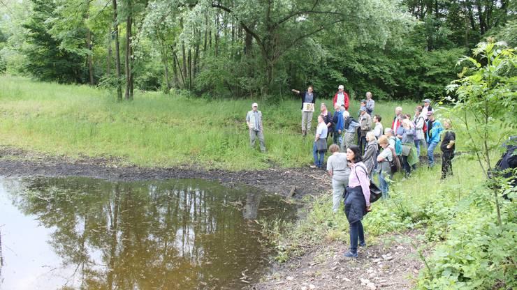 Das Ziel des Projekts ist mehr Biodiversität. Vor einem Jahr konnten die ersten Massnahmen besichtigt werden.