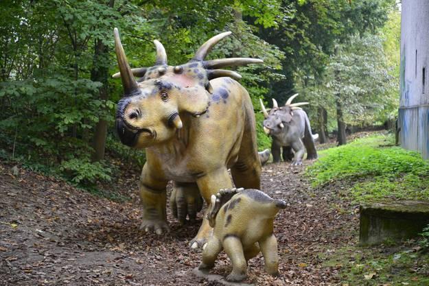 Eine Styracosaurus-Familie im Schlossgraben