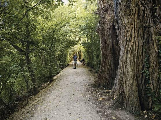 Bauern haben auf Anweisung des Fürstbischofs Jakob Christoph Blarer von Wartensee im 16. Jahrhundert der Dorfbach gezähmt und links und rechts einen Wall gegen das wiederkehrende Hochwasser errichtet. Alte Bäume zäumen die beliebt Jogger- und Auslaufstrecke für Hundebesitzer.