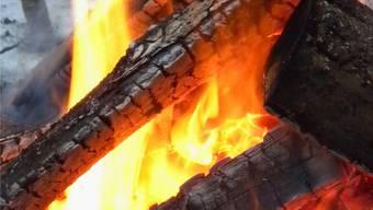 Bei einem Brand in Ligerz am Bielersee ist am Mittwochmorgen Sachschaden in unbekannter Höhe entstanden. (Archiv/Walter Schwager)