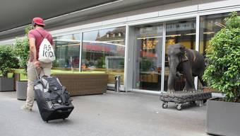 Feines Essen, illegale Machenschaften? Das «Scent of Bamboo» am Aarauer Bahnhof.