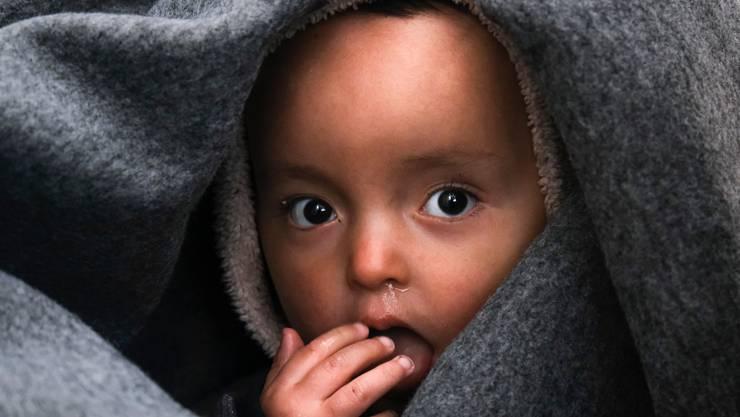 170 Gesuche gingen von Babys ein.