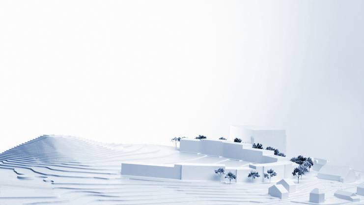 Die geplante Wohnüberbauung auf dem Schöngrün-Areal in Hufeisenform