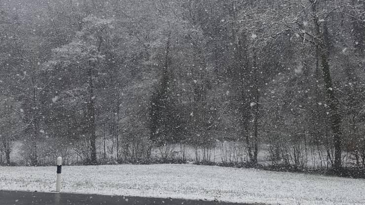Schnee in Schupfart. Danke Manuela für das Bild.