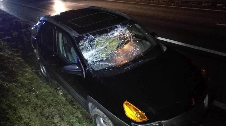 Er fiel auf dieses Auto auf der A1. Glück für die Insassen: Niemand wurde verletzt.