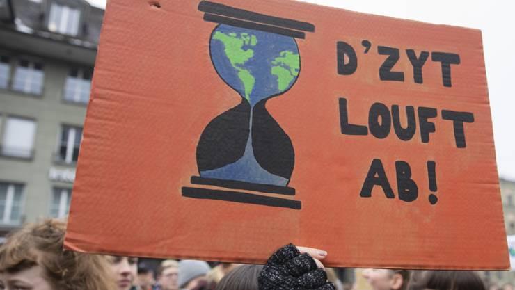 Klima-Demo in Bern im Februar: Junge engagieren sich politisch.