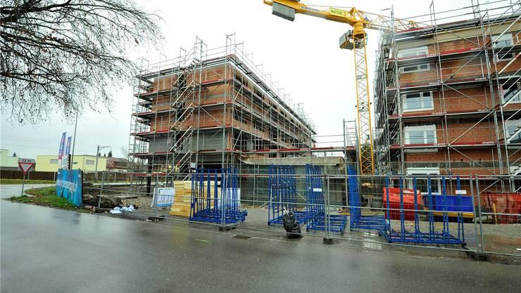 Die Häuser auf dem Baufeld 4 (im Bild die Häuser E1 und E2) sind im Rohbau fast fertig.