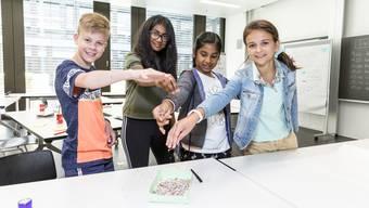 Projektwoche Aargauer Primarschüler 2020