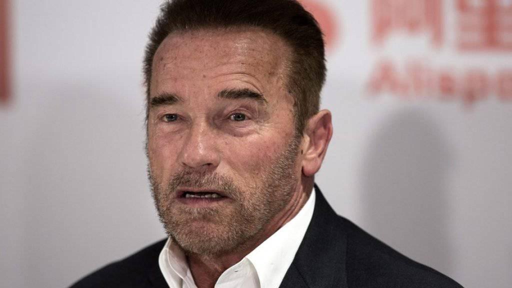 Ohne Training für Körper und Geist kann sich Arnold Schwarzenegger das Leben nicht vorstellen (Archiv)