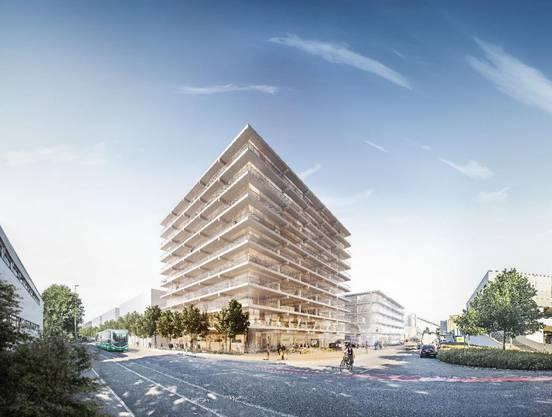 Herzog & de Meuron treten auch als Bauherren im Bachgraben auf. Ihr eigenes Projekt will doppelte Höhe erreichen und von Basel her als Eingang der Silicon Mile wahrgenommen werden.