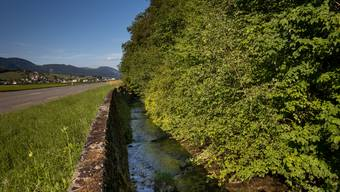 So trist soll das Dünnern-Ufer bei Herbetswil in Zukunft nicht mehr sein.