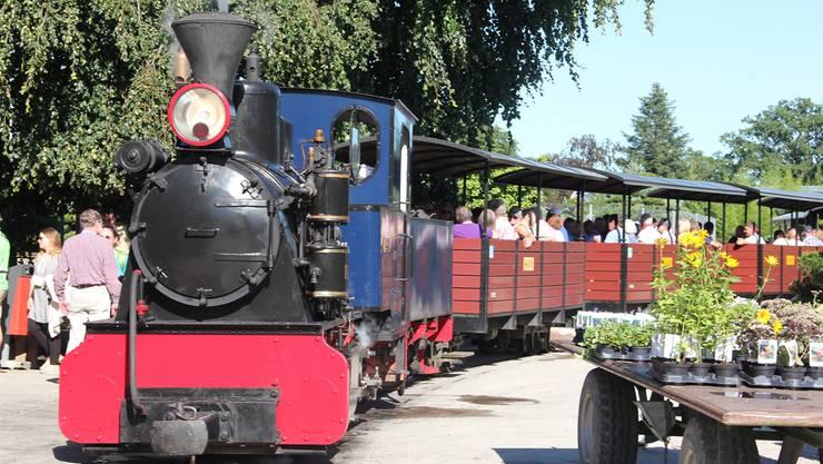 Zur ausführlichen Besichtigung des Gartencenters in Schinznach-Dorf gehört natürlich auch eine Fahrt mit der Baumschulbahn. ZVG